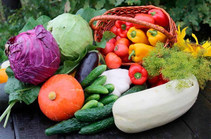 Плодоовощной союз: цены на овощи в России могут начать снижаться в ближайшие 2-3 недели
