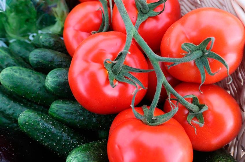 В России за неделю значительно подорожали огурцы и помидоры
