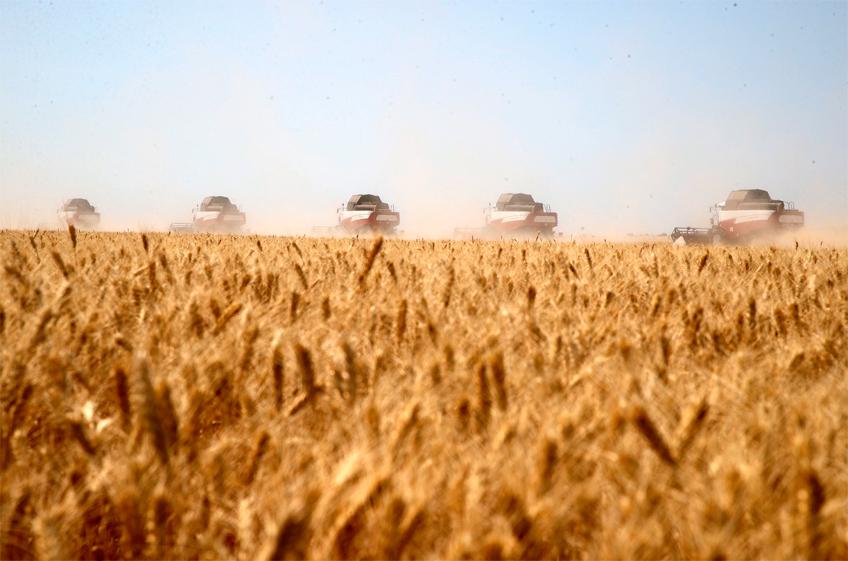 В России собрано 115,9 млн тонн зерна